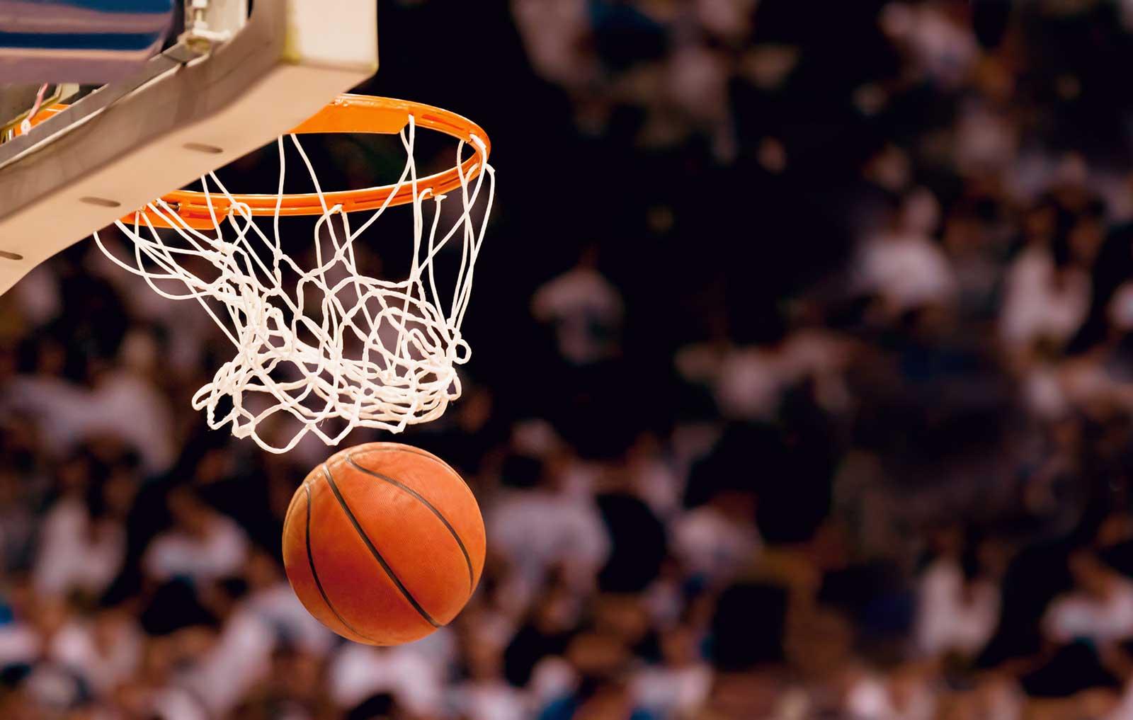 košarka tipovi